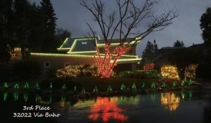 holidaylighting2016-3rd-place-32022-via-buho